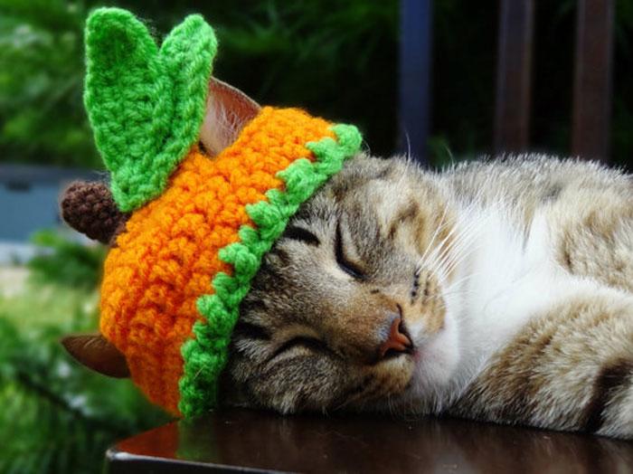 Carrot Hat