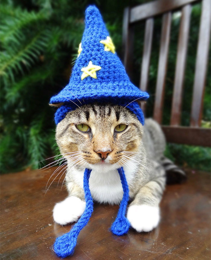 Wizard Hat