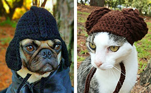 Artist Crochets Pet Hats And They're Purrfect