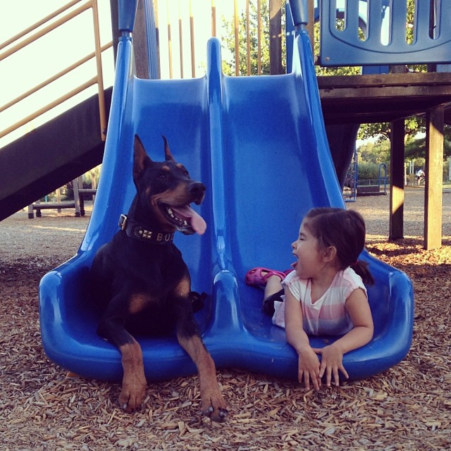 cutie-and-the-beast-dog-girl-seana-doberman-10