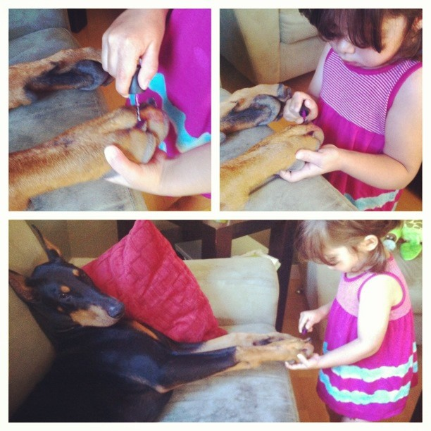 cutie-and-the-beast-dog-girl-seana-doberman-53