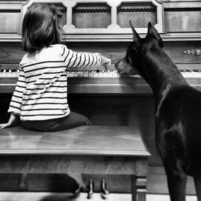 cutie-and-the-beast-dog-girl-seana-doberman-76