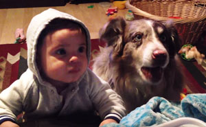 Mom Offers Baby A Treat If He Says 'Mama,' Dog Says It First