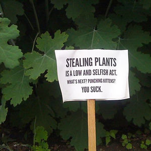 Stealing Plants