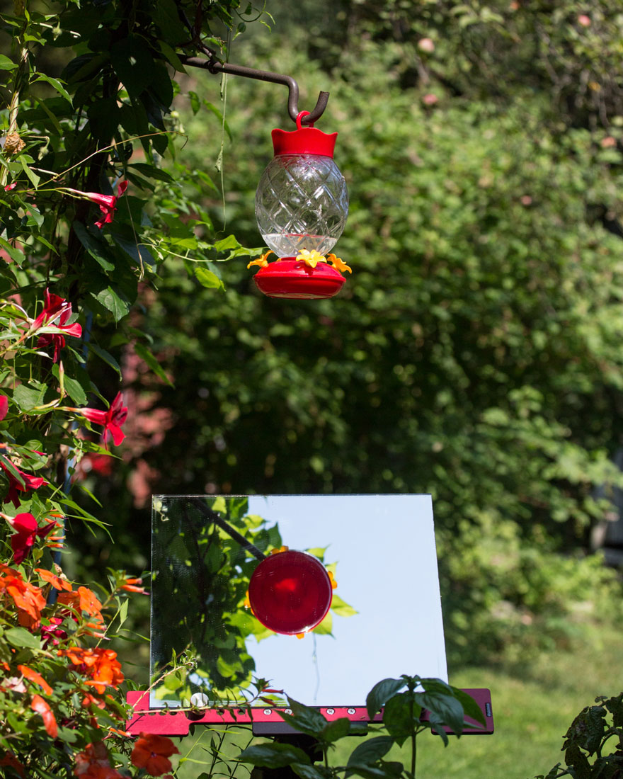 hummingbird-feeder-long-exposure-angled-mirror-9