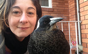 How A Magpie Saved Our Cat's Life And Brought Joy To Our Home