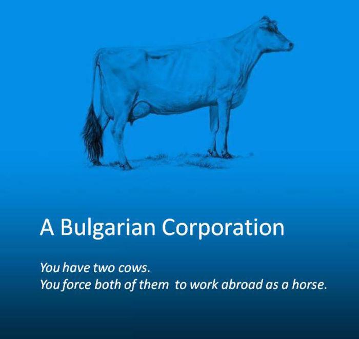 A Bulgarian Corporation