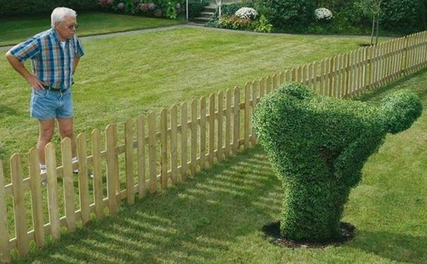 This Happens When You Live Next Door To Edward Scissorhands