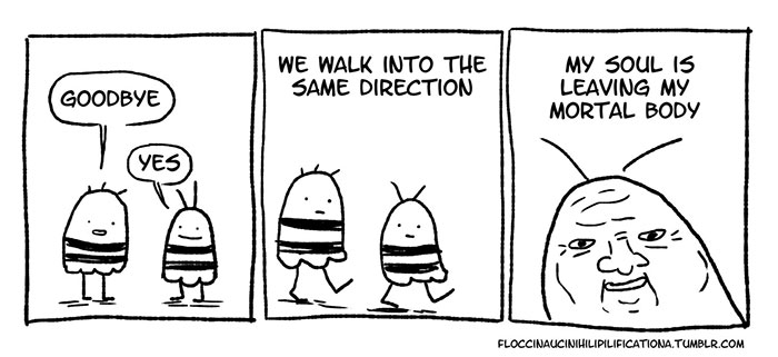 Socially Awkward Bee