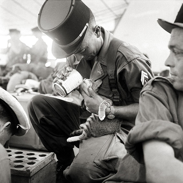 A French Soldier Feeding His Kitten, Indochina 1956