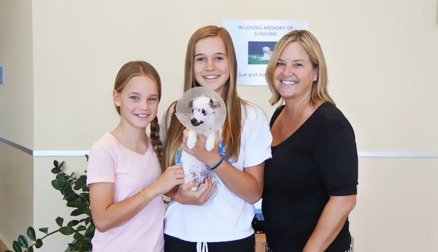 strange-puppy-lucky-hssv-adopt-christine-doblar-10