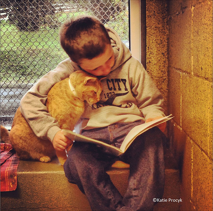 woman-reads-books-shelter-dogs-pittsburgh-6