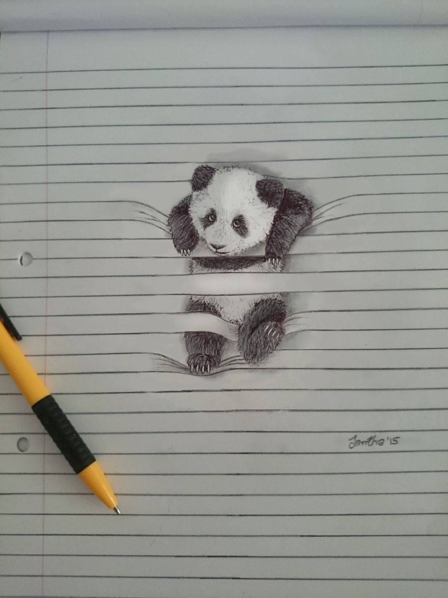 I draw animals that dont want to stay between the lines bored panda