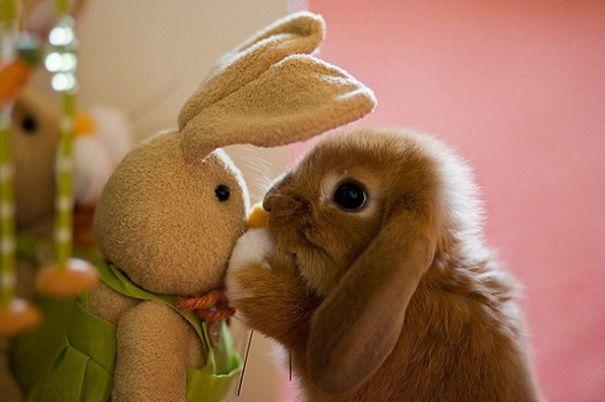Shshsh!