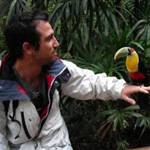 Matty Hakim Ariel