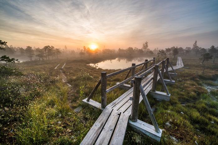 Magical Autumn Fog In Over 8000-Year-Old Kemeri Bog