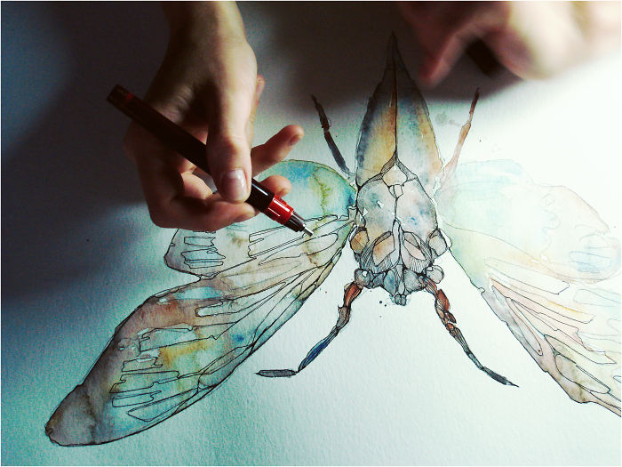 Drawing In Fast Motion