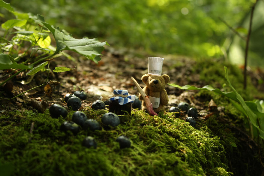 Learn How To Make Blueberry Jam With This Tiny Bear