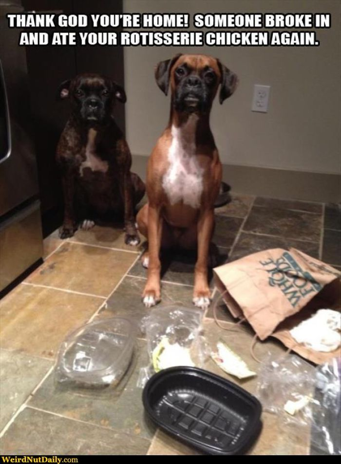No, We Have No Leftovers In Our Teeth!