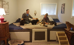 Couple Has 5 Cats And 2 Dogs That All Love To Sleep In Bed So They Made A 11ft Mega Bed