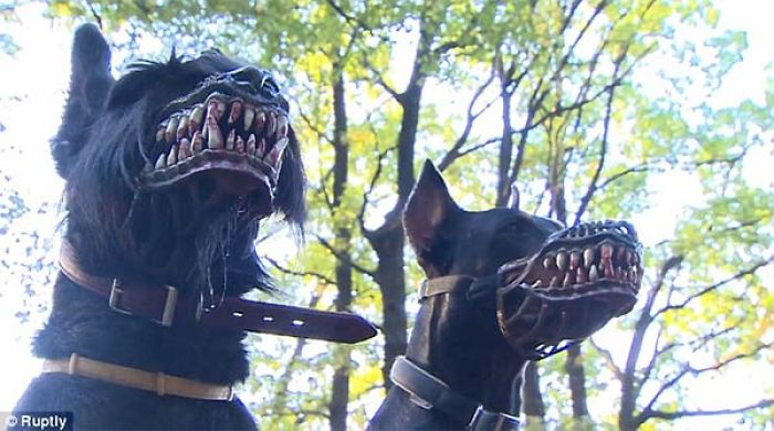 This Terrifying Dog Muzzle Will Transform Your Pooch Into A Frightening Werewolf