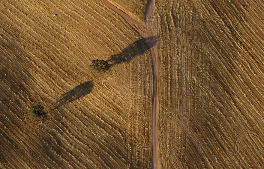 Field From A Balloon