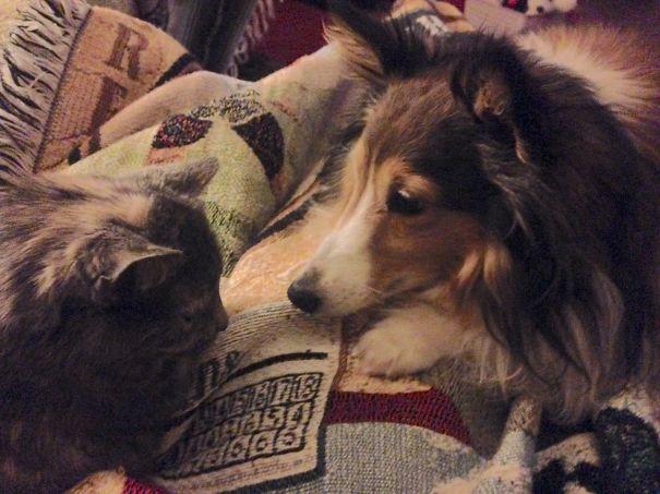 Maggie Loves Sassy