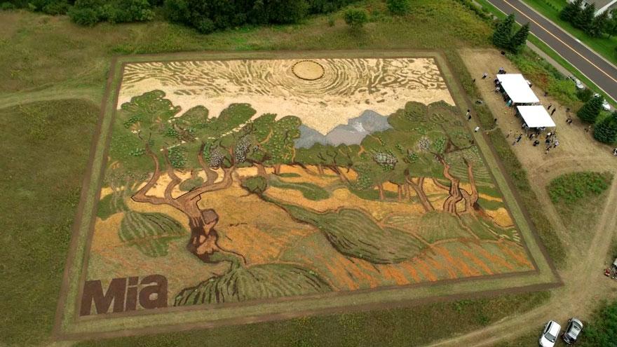 land-art-painting-field-van-gogh-olive-trees-stan-herd-12
