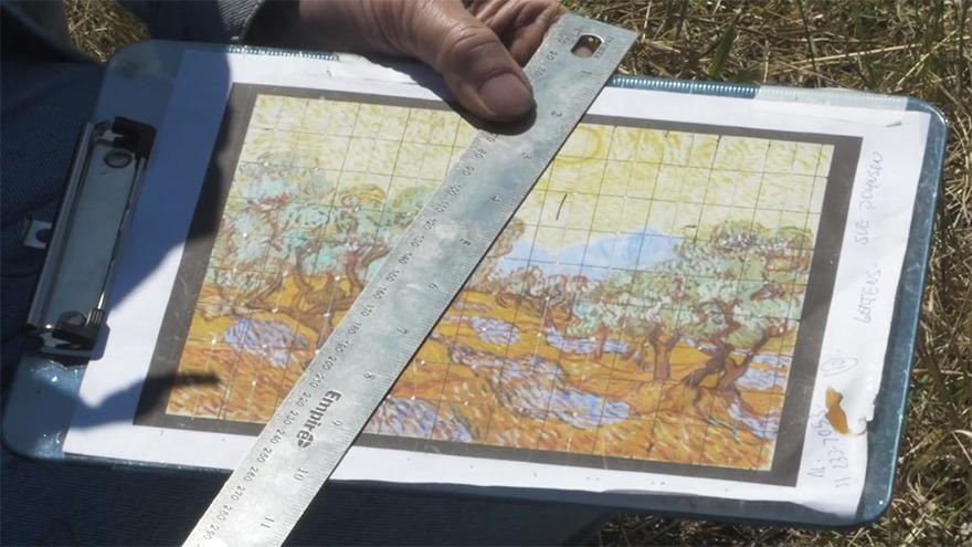 land-art-painting-field-van-gogh-olive-trees-stan-herd-2