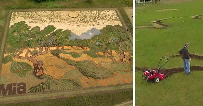 Artist Plants 1 2 Acre Field To Recreate Van Gogh S 1889 Painting