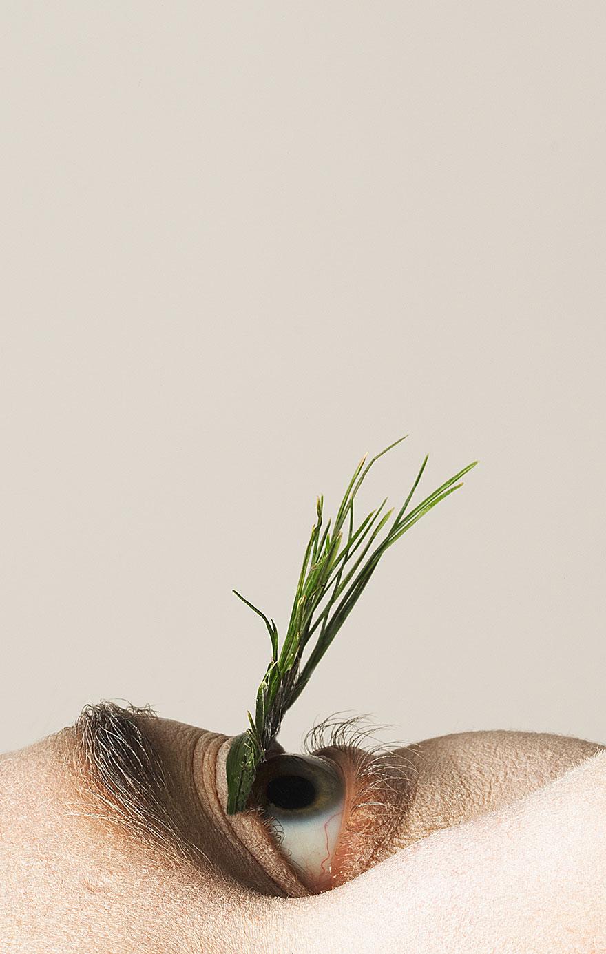 natural-eyelashes-foliage-mary-graham-3