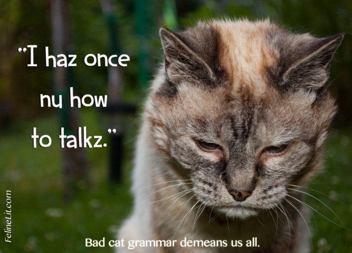 I Haz Once Nu How To Talkz