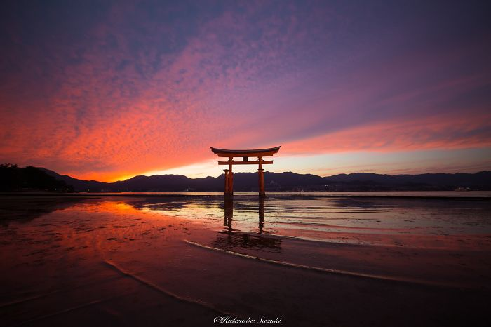 Shrine Floating On The Sea (itsukushima Shrine)