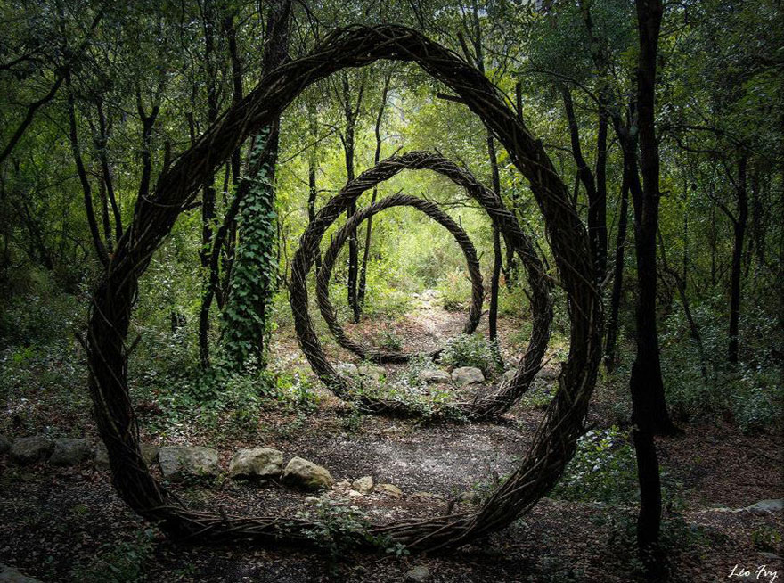 Sculptures In The Forest