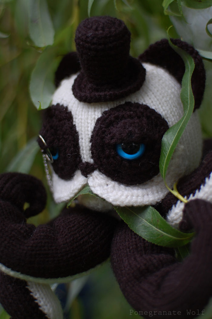 Blue Eyed Pandapus And Some Crazy Bored Panda Family Members