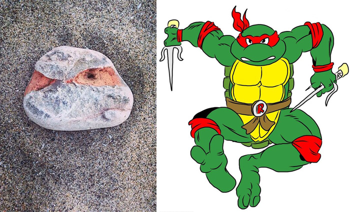 I Found A Rock That Looks Like Raphael