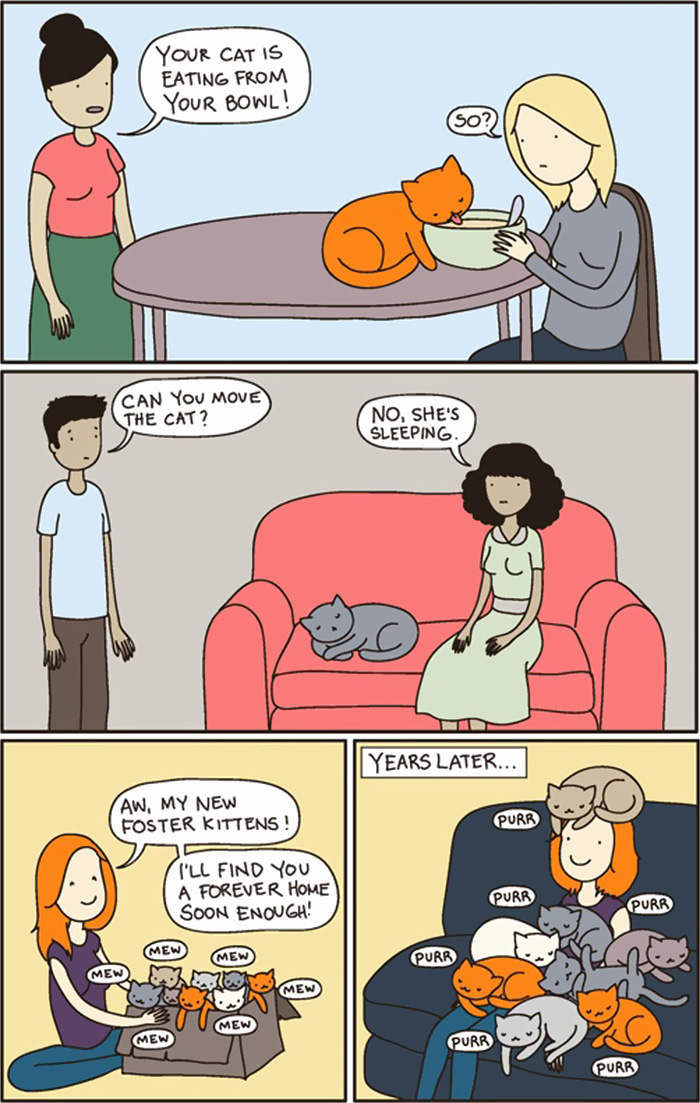 Funny Comics Reveal The Reality Of Owning A Cat Bored Panda - 18 hilarious comics that are all too true for cat owners