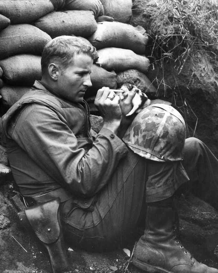 When Marine Sergeant Frank Praytor Fed A 2 Week-old Kitten After Her Mother Was Killed.