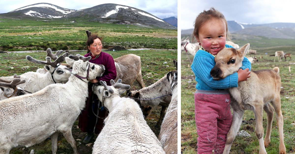 Meet The Tsaatan Nomads In Mongolia Who Live Like No One Else