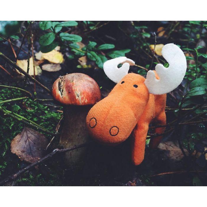 Loves Mushrooms