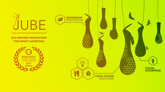 Biomimicry Innovation For Food Crisis