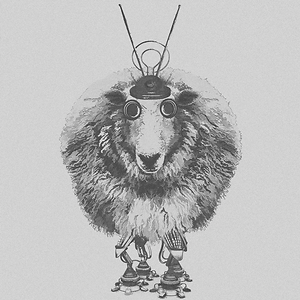 r.ewe
