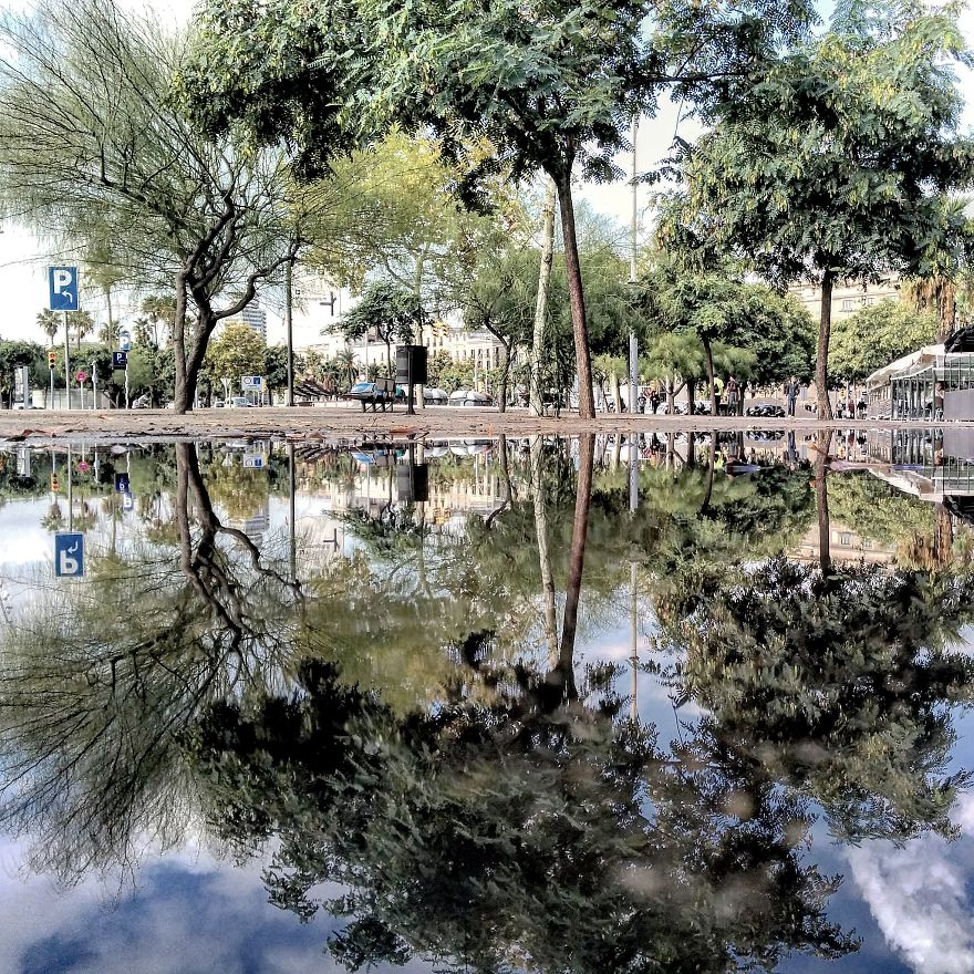 The Parallel Worlds Of Puddles (Part 2)