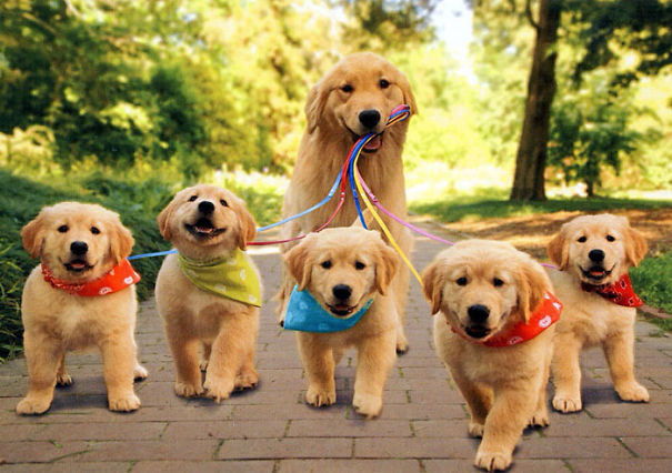 Proud Mommy