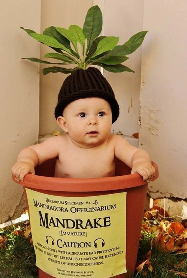 Harry Potter Mandrake Costume