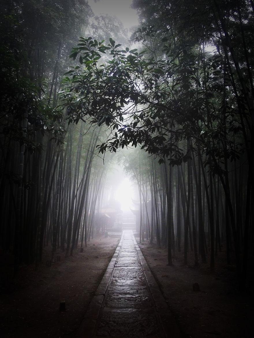 Shunan Zhuhai, Bamboo Sea