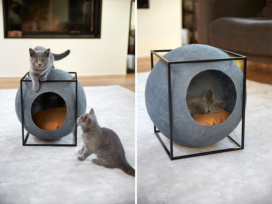 cat-cocoon-meyou-sanchez--gadenne-18