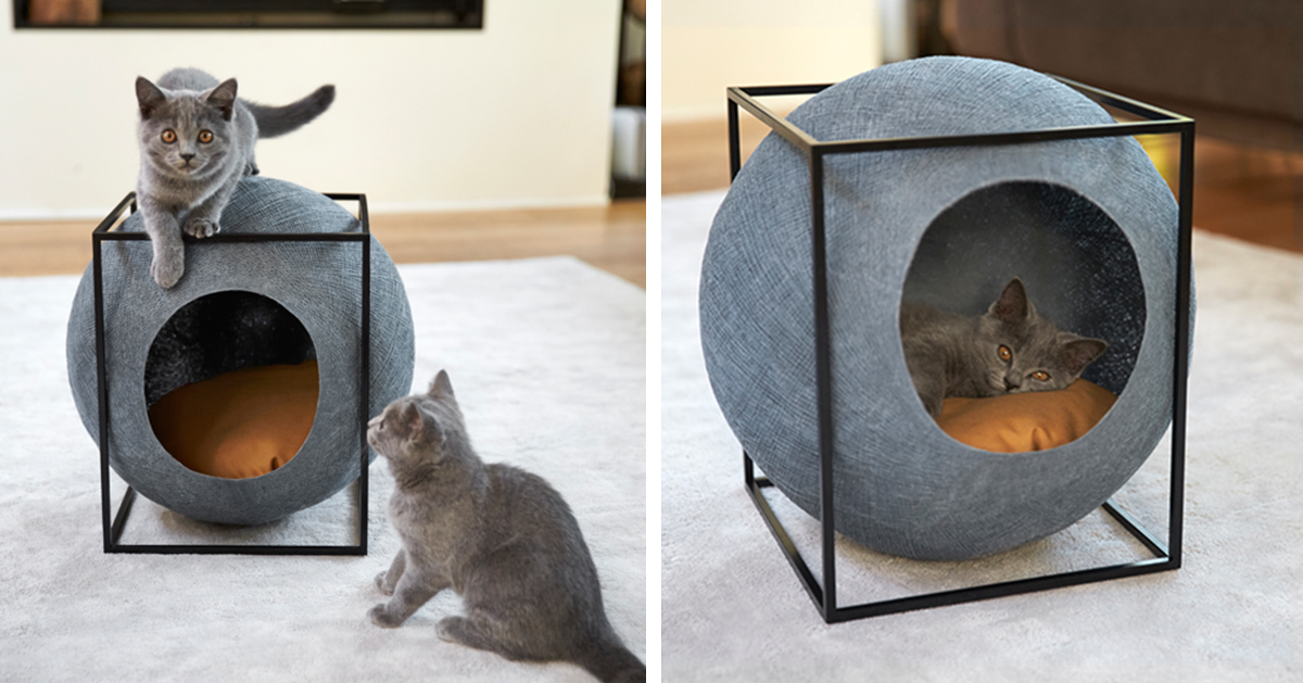 Cat Cocoons Designed For Modern Interiors And Made By People With  Disabilities | Bored Panda
