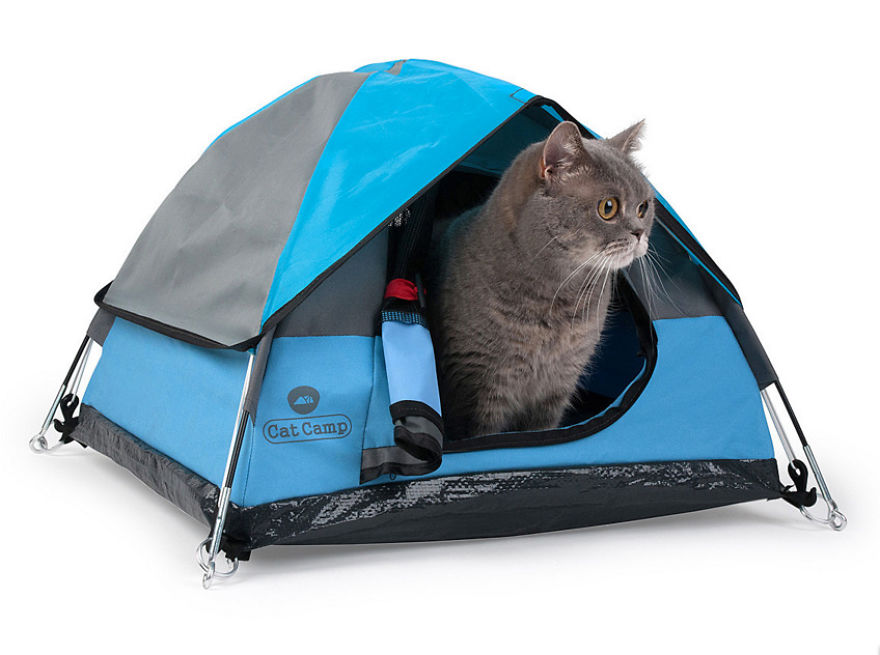 tiny tents for cats bored panda