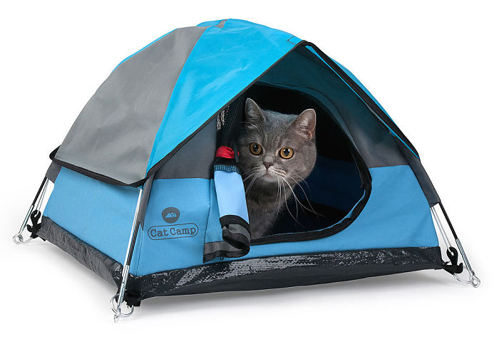 Tiny Tents For Cats!